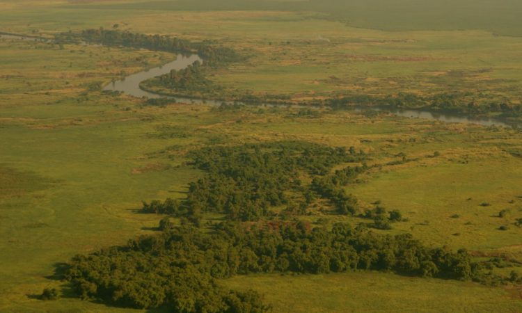 Upemba National Park