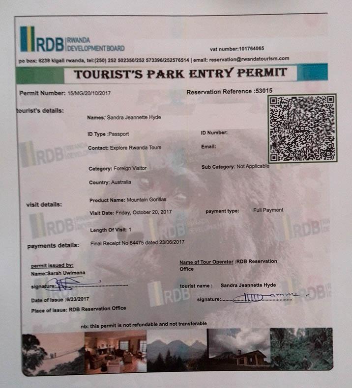 Free Gorilla Permit in Rwanda