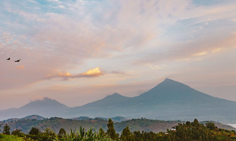 Virunga Mountains Hike