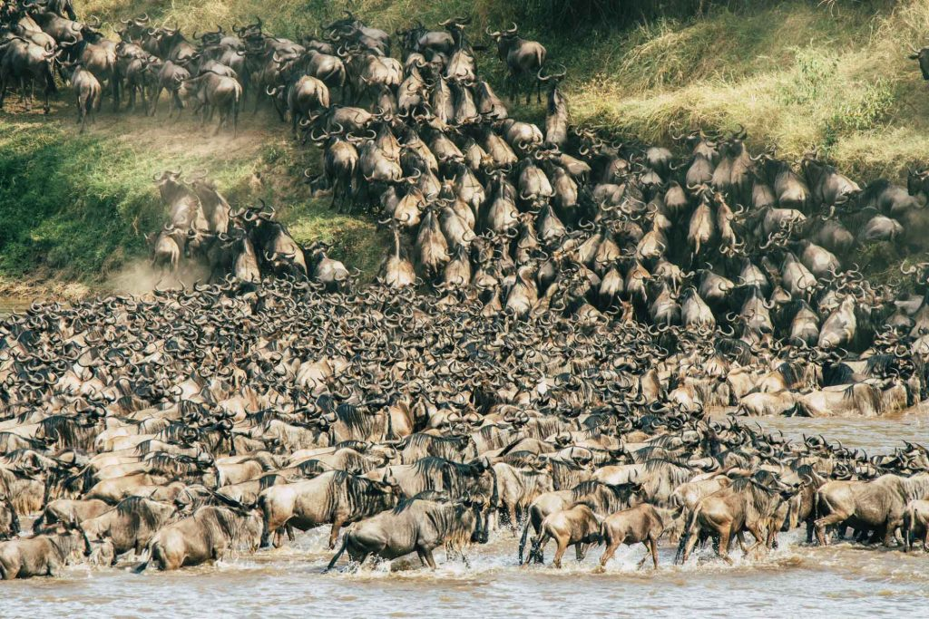 Top 10 tourist destinations in East Africa
