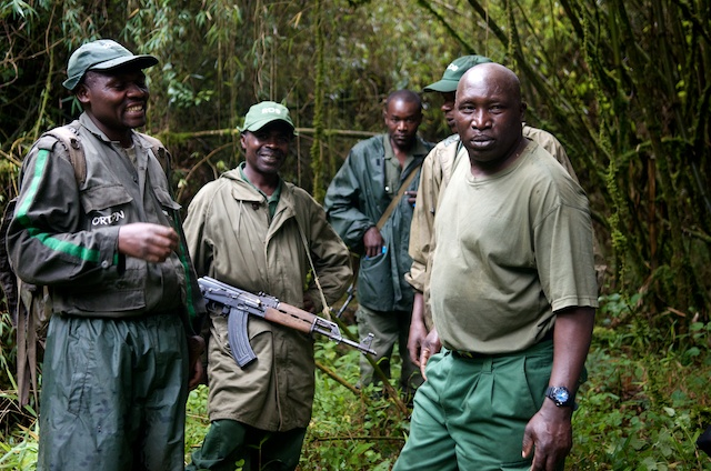 Armed Game Ranger in Volcanoes National Park to improve the Safety of travelers in Rwanda National Parks.