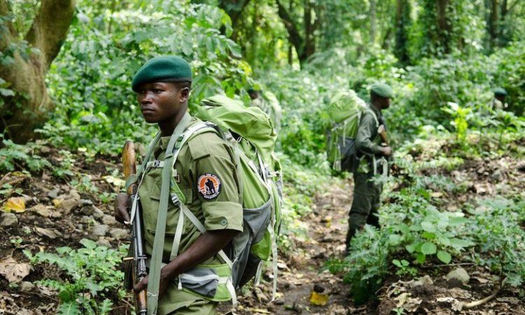 Is Virunga National Park Safe?