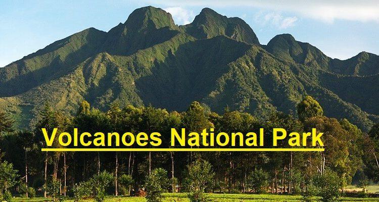 Why visit Volcanoes National Park