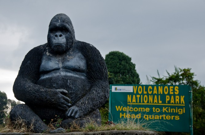 Travel Guide for Volcanoes National Park