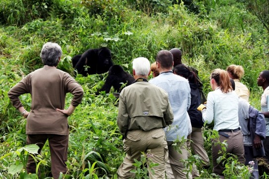 Gorilla Trekking attire in Rwanda