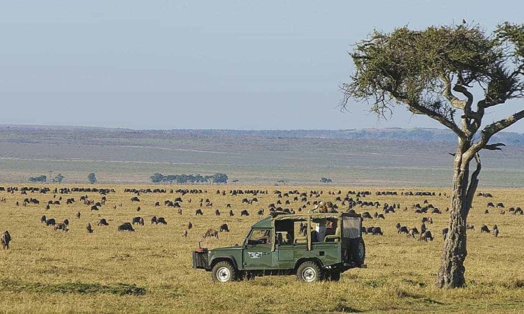 5 Days Volcanoes & Masai Mara National Parks Safari