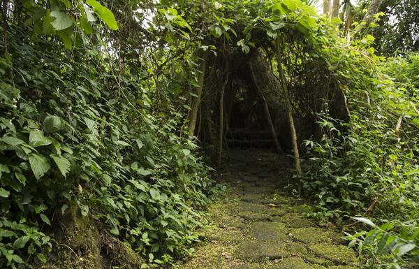 Buhanga Eco Park