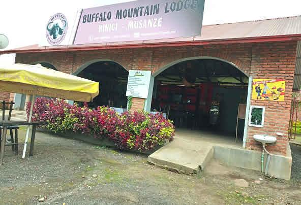 Buffalo Mountain Lodge- Volcanoes National Park Rwanda